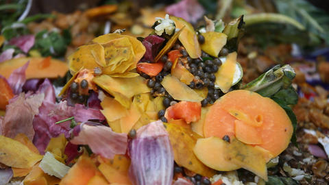 Fruits Garbage Dump stock footage