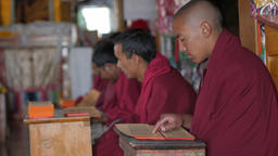 Monks Read Chants From Scripts,Key,Spiti,India stock footage