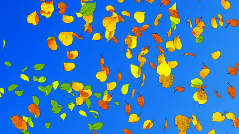 Fall Leaves Slow-mo Cartoon Animation stock footage