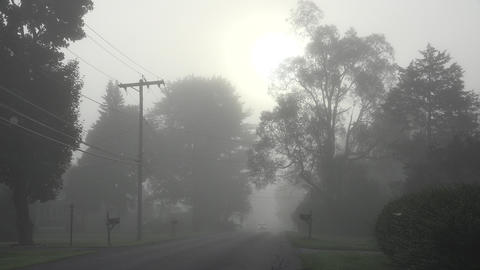 Foggy Morning And Misty Cloud stock footage