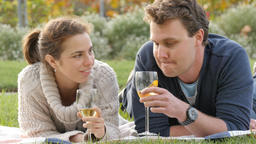 Romantic young couple in park drink wine celebrating marriage engagement ビデオ