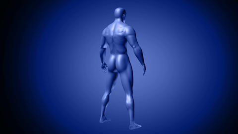 Rotating blue hologram of male human body Animation