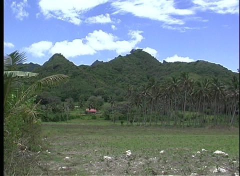 Establishing Shot Of Rarotonga's Grass Covered Hills, One Of The Cook Islands stock footage