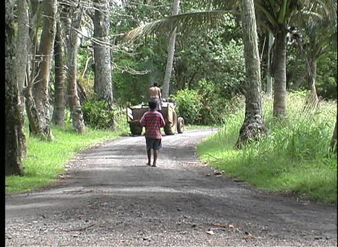 A Rural Gravel Road With A Boy Walking Alone As A Tractor Passes By On Rarotonga One Of The Cook Isl stock footage