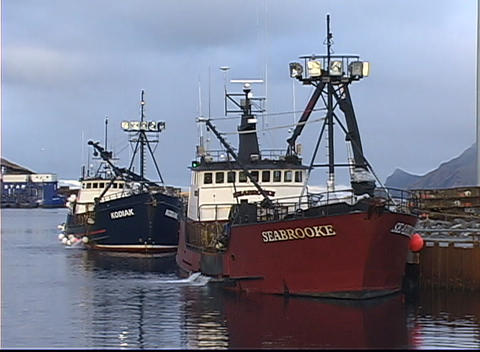 Four Crabber Vessels Rest Against The Dock In Calm Waters stock footage