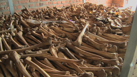 Leg Bones Of Skeletons In Long Rows Offer A Grim Remembrance Of The Rwanda Genocide stock footage