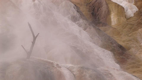 A dead tree branch mysteriously rises out of limestone deposits encased in a misty shroud of rising Footage