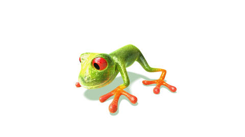 frog2 Animation