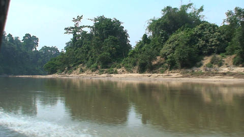jungle boat at the river Footage