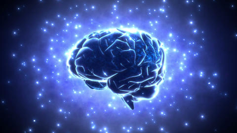 Brain 2 D 1 B HD stock footage