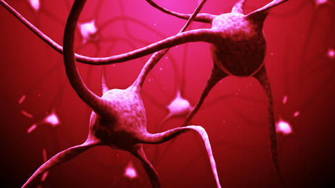 Neurons stock footage