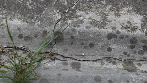 Raindrops Appear On Concrete 2 stock footage