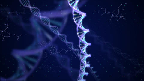 DNA BB HD Animation