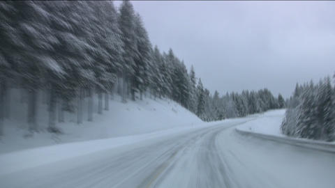 Car On Winter Forest Road stock footage