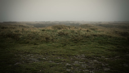 Misty Yorkshire Moor stock footage