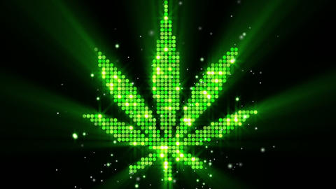 Cannabis Leaf Shape Last 10s Loop stock footage