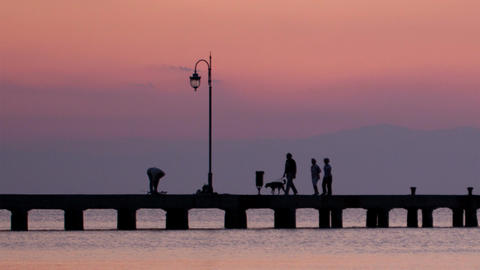 Family walking their dog on a pier at sunset Footage