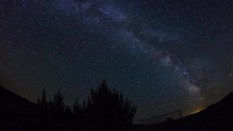 Fish Eye View Of Milky Way Above With Trees stock footage