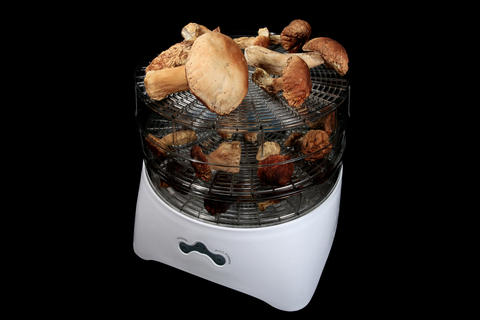 4K. Drying mushrooms in Electric driers on the bla Footage