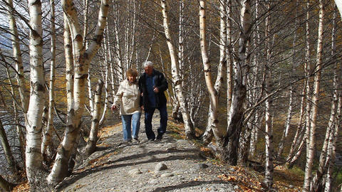 Happy Elderly Couple Walking In The Forest, Smilin stock footage