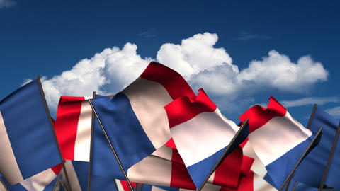 Waving French Flags stock footage