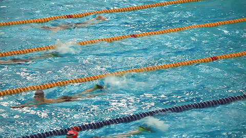 Competitive Swimming stock footage