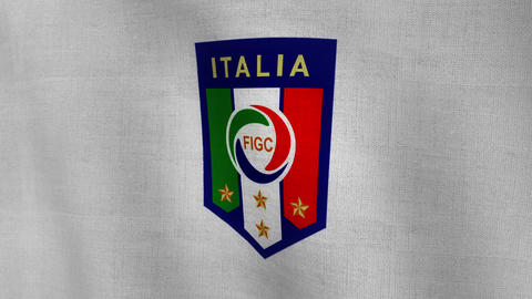 World Cup Italy Logo Flag (Clean Not Treated) stock footage