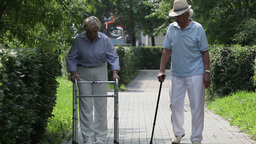 Disabled Couple Walking In Park stock footage