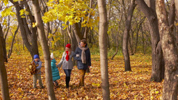 Family Of Four Spending Their Sunny Autumn Weekend In The Park stock footage