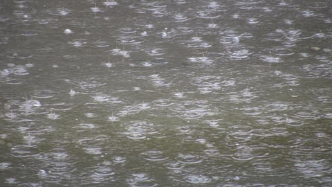Rain Drops Fall Into Puddle Creating Water Ripples (High Definition) stock footage