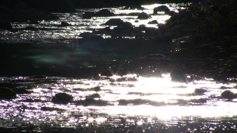 Sunlight creates sparkles on the stream's flowing surface (High Definition) Footage