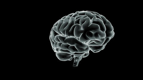Brain Spin stock footage