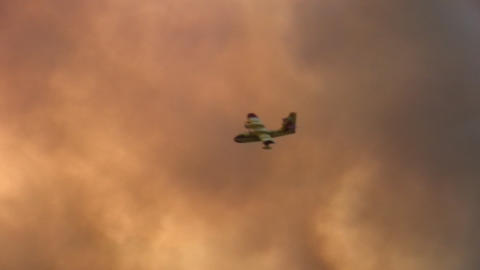 Forest Fire - MA 2007waldbrand10 stock footage