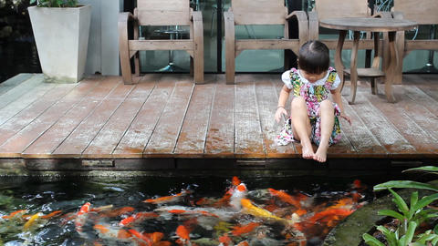 HD DOLLY:girl Sitting And Looking Koi stock footage