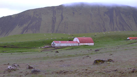 Rural Farm In Iceland stock footage