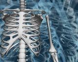 Bone Structure stock footage