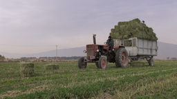 Harvesting Hay With Tractor In Iran Countryside stock footage