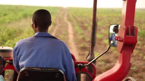 Man and boy on tractor Footage