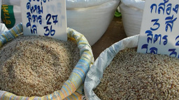 Vendors Displaying Varieties Of Raw Rice In A Mark stock footage
