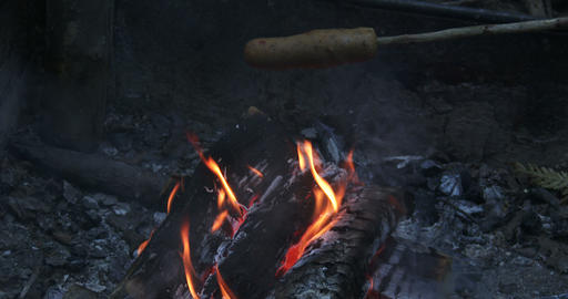 Veggie Hot Dog Roasting On Fire stock footage
