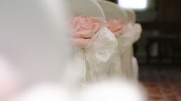 Pink Silk Rose wedding theme stock footage Footage