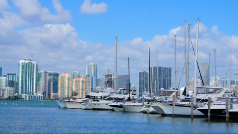 Marina In Key Biscayne stock footage