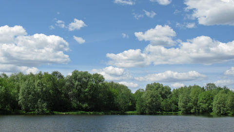 Sunny Pond Time Lapse stock footage
