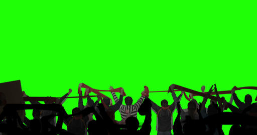 Layered Crowd On Green Screen stock footage