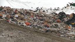HD2008-12-8-2 Landfill Caterpiller stock footage