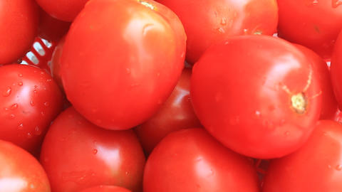 The Red Ripe Tomatoes stock footage