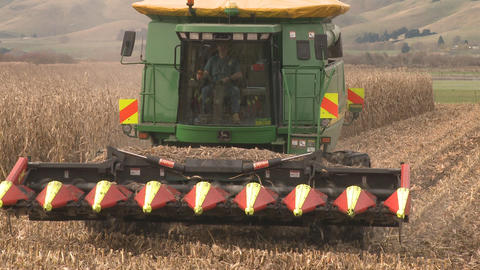 Maize Harvester At End Of Row And Turn stock footage