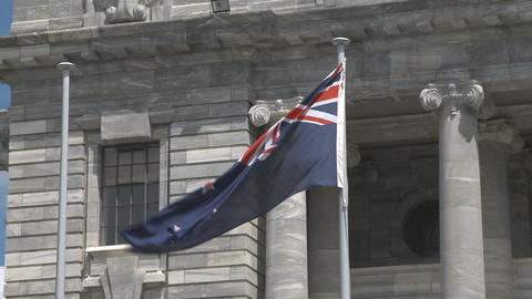 New Zealand Flag Outside Parliament stock footage