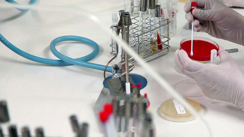 Student Hands Of Medical Research In The Analysis  stock footage