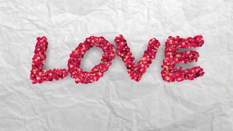 Love Flower stock footage